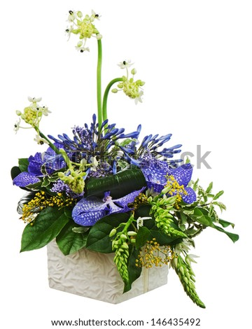 Bouquet from orchids and Arabian Star flower (Ornithogalum arabicum) in vase isolated on white background. Closeup. - stock photo