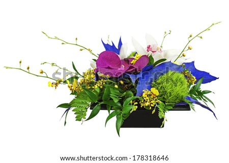 Bouquet from orchids in black vase isolated on white background. Closeup. - stock photo