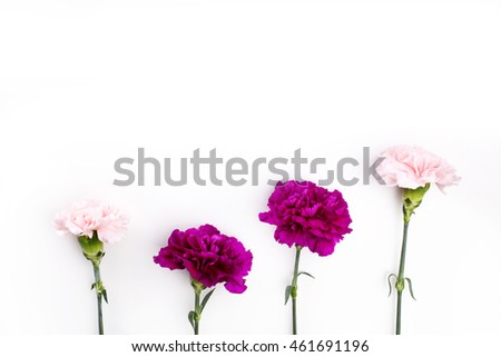 Bouquet from pink and purple gilly flowers on white background, top view