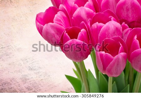 Bouquet from tulips flowers isolated on retro background - stock photo