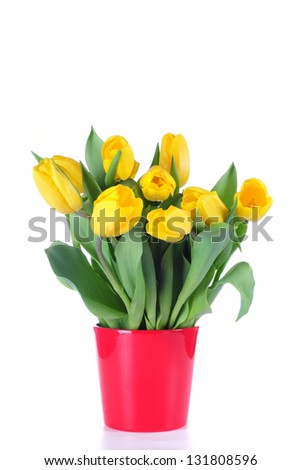 Bouquet from yellow tulips in a red vase