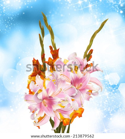 Bouquet Gladiolus - stock photo