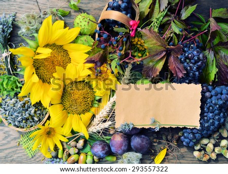 Bouquet of autumn flowers and berries - stock photo