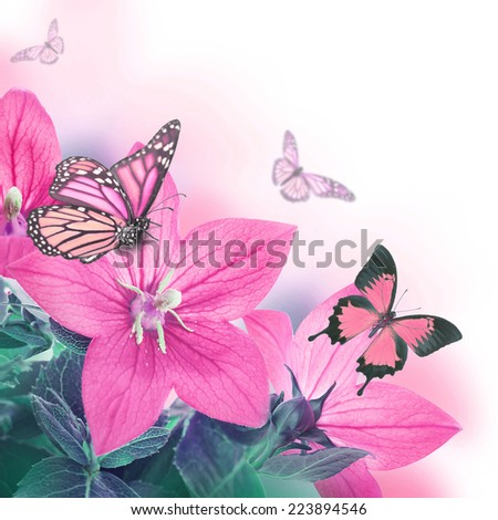 Bouquet of bells and butterfly, floral background - stock photo