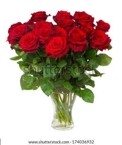bouquet of blossoming dark red roses in vase isolated on white background - stock photo