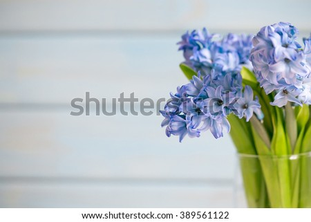 Bouquet of blue hyacinths in a transparent vase on a light wooden background.