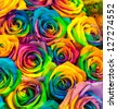 bouquet of colored roses (Rainbow rose) - stock photo