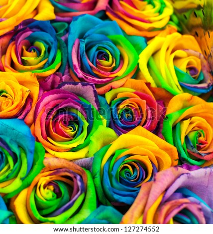 Bouquet Colored Roses Rainbow Rose Stock Photo 127274552 ...