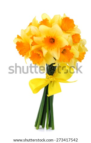 Bouquet of daffodils with a yellow ribbon isolated - stock photo