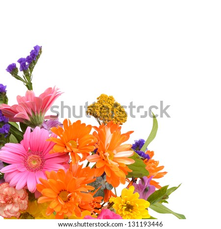 Bouquet of Dahlia flowers on white - stock photo