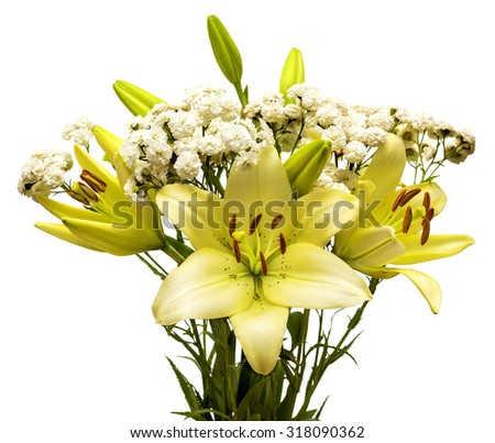 Bouquet of daisies and lilies isolated on white background - stock photo