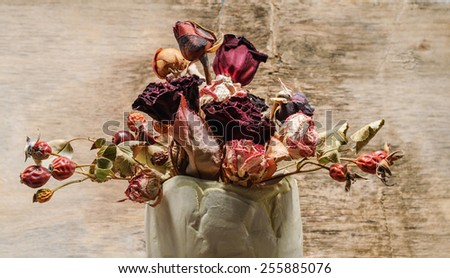 bouquet of dried flowers in the vase - stock photo