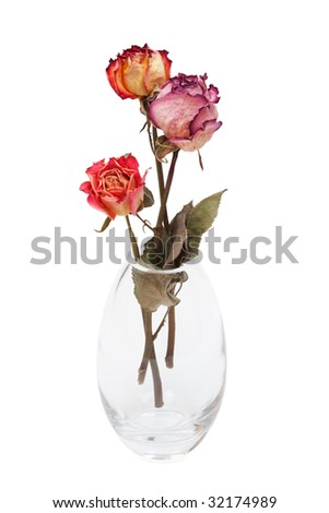 bouquet of dried roses on a white background - stock photo