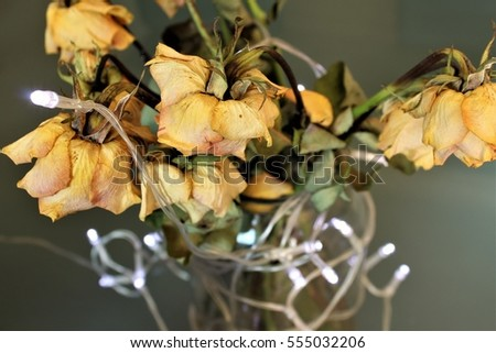 bouquet of dry yellow roses