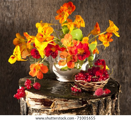 bouquet of flowers and berries - stock photo