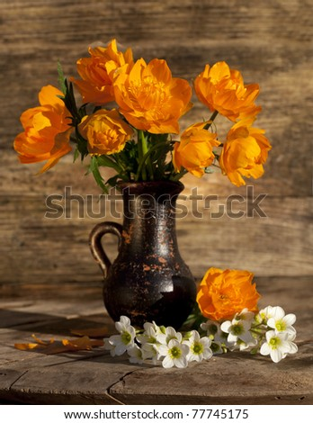 bouquet of flowers Globeflowers Orange - stock photo