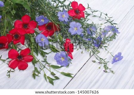 Bouquet of flowers of red and blue flax with buds and green leaves - stock photo