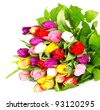 bouquet of fresh assorted tulip flowers on white background - stock photo