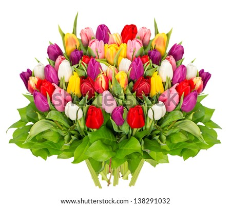 bouquet of fresh colorful tulips isolated over white background. spring flowers - stock photo