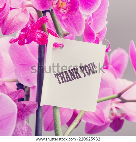 Bouquet of fresh pink phalaenopsis orchids with a Thank You note expressing appreciation for a service or gift, close up square format view. - stock photo