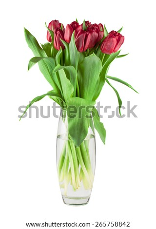 Bouquet of fresh red tulips in a glass vase isolated on white background