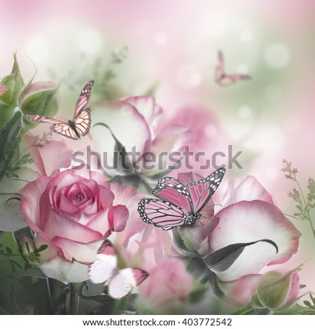 Bouquet of fresh roses, flower bright background and butterfly.