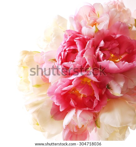 Bouquet of fresh tulips isolated on white - stock photo