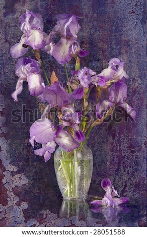 bouquet of Iris on the background of green trees evening