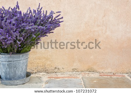 Bouquet of lavender in a rustic metal bucket - stock photo