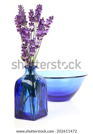 Bouquet of lavender in blue bottle on white background - stock photo