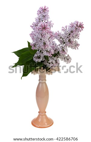 Bouquet of lilac in a vase on white background with Clipping Path.
