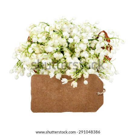 bouquet of lilies of the valley in a basket with a card isolated - stock photo