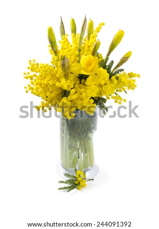 bouquet of mimosa and narcissus flowers isolated on white - stock photo
