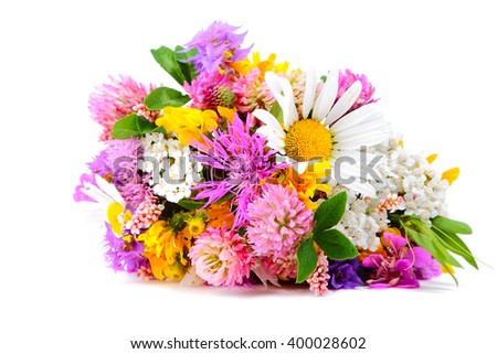Bouquet of miscellaneous field flowers on white background - stock photo
