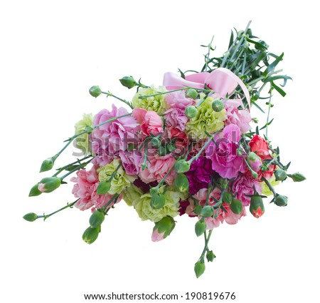 bouquet of multicolored carnation flowers isolated on white background - stock photo