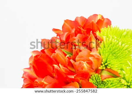 Bouquet of orange double petaled tulips with green chrysanthemums and copy space. - stock photo