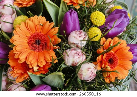 Bouquet of orange gerbera daisies, violet tulips and pink roses - stock photo