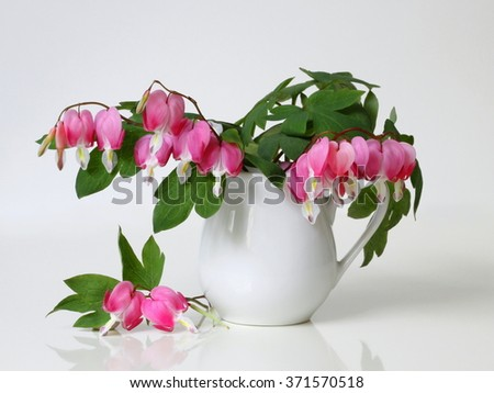 Bouquet pink bleeding heart flowers vase stock photo edit now bouquet of pink bleeding heart flowers in a vase romantic floral still life with bouquet mightylinksfo