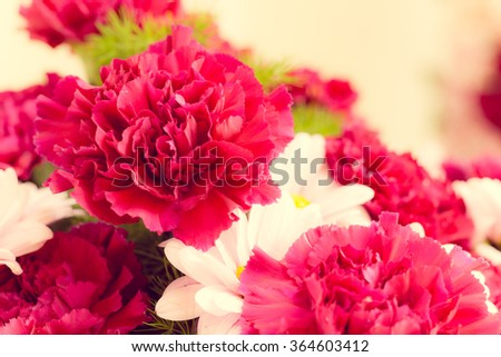 Bouquet of pink flowers of chrysanthemums.