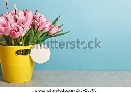 bouquet of pink fresh tulips with pussy-willow in yellow bucket on table on blue backround - stock photo