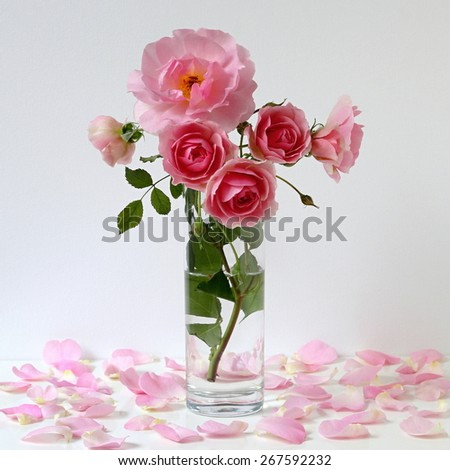Bouquet of pink roses in a vase. Romantic still life with roses and petals. - stock photo