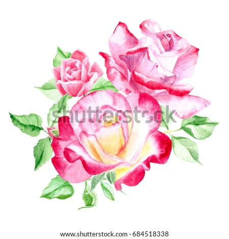 Bouquet pink roses rose bush pink stock illustration 684518338 bouquet of pink roses rose bush pink flowers watercolor painting wedding and mightylinksfo