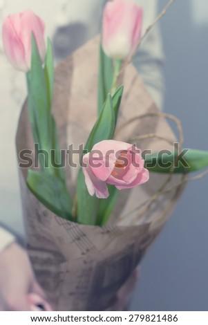 bouquet of pink tulips gentle tones flower - stock photo