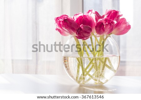bouquet of pink tulips in glass vase in morning light on white table. - stock photo