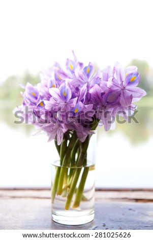 Bouquet of purple flowers in a glass