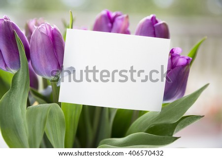 Bouquet of purple tulips and blank card with copy space for your Easter or seasonal greeting. - stock photo