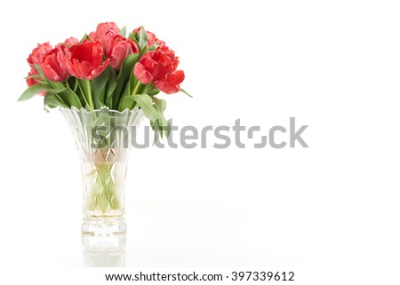 Bouquet of red fresh spring tulip flowers in vase on left side on white background. - stock photo