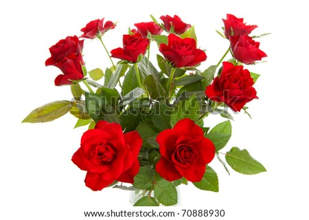 Bouquet of red roses in closeup over white background