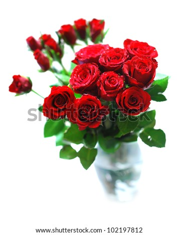Bouquet of Red Roses in Glass Vase on White Background - Shallow Depth of Field