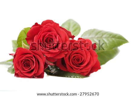 bouquet of red roses isolated on white.